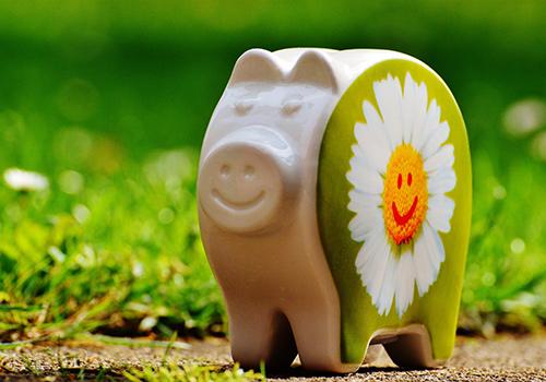 tirelire-cochon-fleur-pâquerette-smiley-prairie